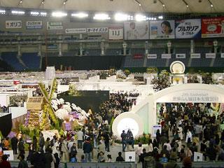 世界らん展2010_1